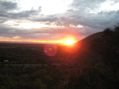 A ture bushveld sunset seen on the game drive